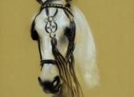 Grey blinkered horse